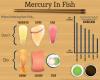 Final Mercury