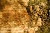 brick-wall-58056_640