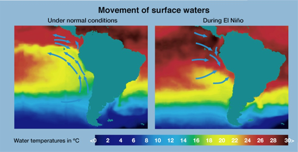 Movement of Surface Water Temperatures During El Nino licensed under CC BY 2.0