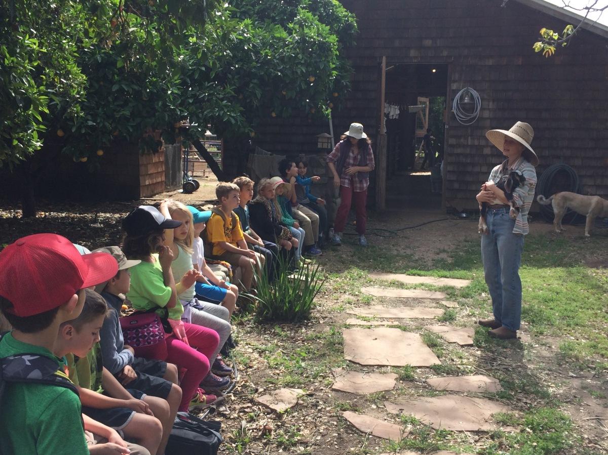 grace_teaching_class_goats_bycarolesylvester2017